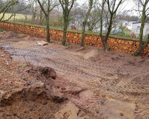 Conifer logs forming tidy bank at perimeter of property
